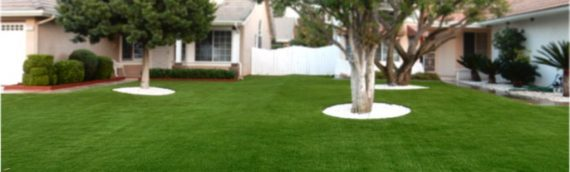 Artificial Lawn Maintenance