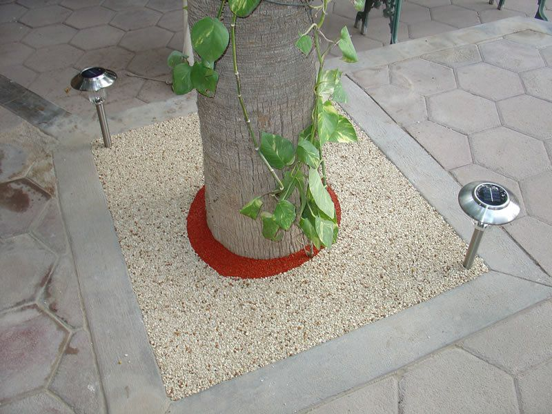 Rubber Tree Well Installation in San Diego, Porous Tree Well