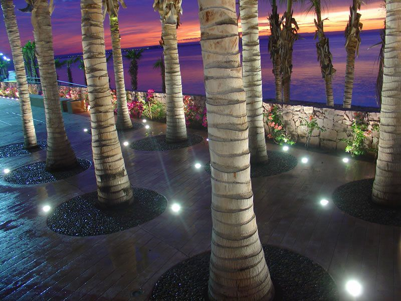 Artificial Grass Tree Well Surfacing Company San Diego, Synthetic Turf Tree Well Installation
