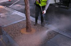 Tree Well Resurfacing San Diego, Porous Tree Well Installation Company