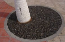 Porous Tree Well San Diego, Best Tree Well Installation
