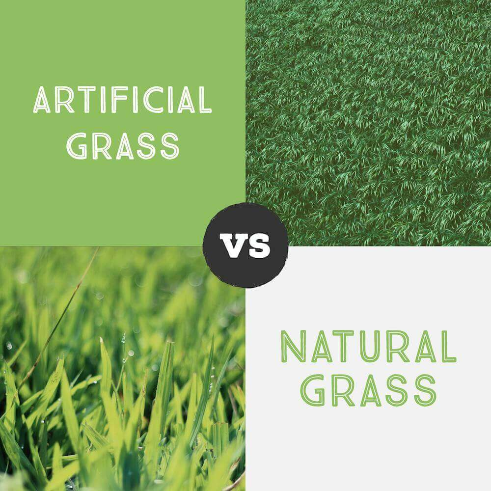 Artificial Turf Benefits San Diego, Pros and Cons, Natural Grass Disadvantages