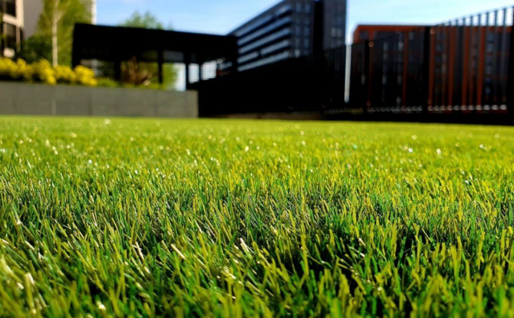 Benefits of Artificial Grass for San Diego, CA