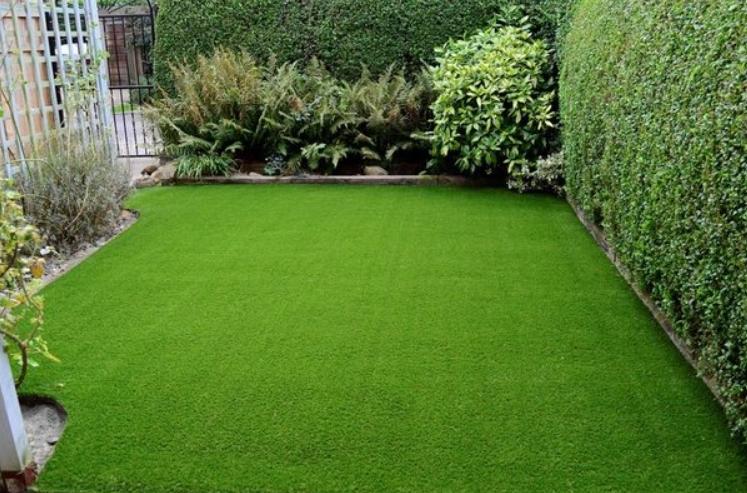 Best Artificial Grass In San Diego