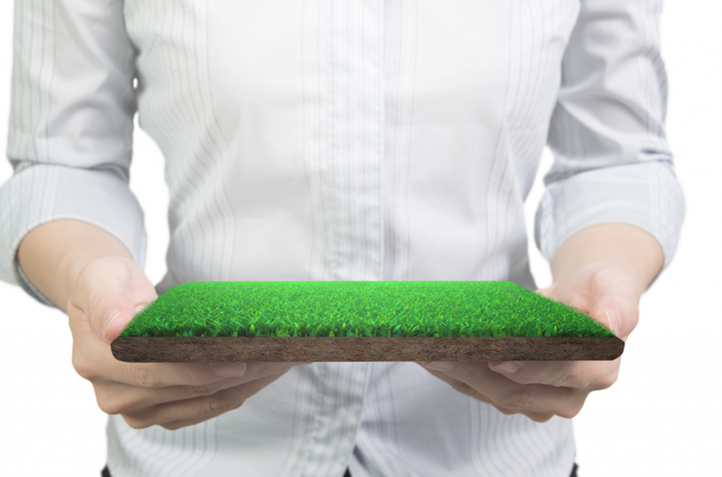 How To Care About Your Synthetic Grass In San Diego