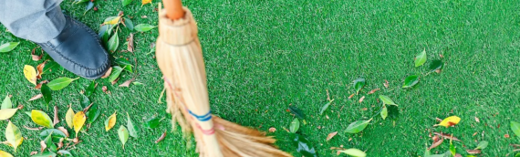 ▷How To Maintain Your Artificial Grass In The Fall