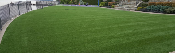 ▷Resolve Frustrating Lawn Issues Artificial Grass San Diego