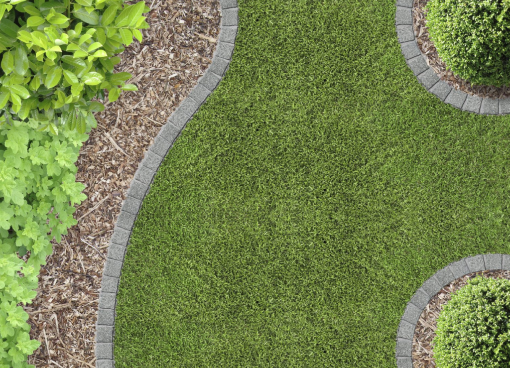 Common Landscape Design Mistakes In San Diego