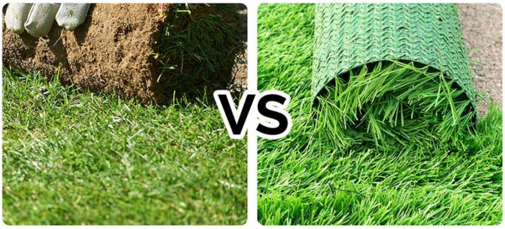 Artificial Grass For Dogs In San Diego, CA Versus Natural Grass