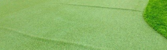 ▷Artificial Grass A Great Investment In San Diego