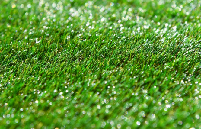 Eliminate More Pests And Animals With Artificial Grass Pros In San Diego