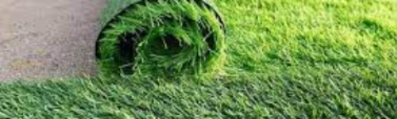 ▷Why Artificial Grass Pros Are The Best In San Diego