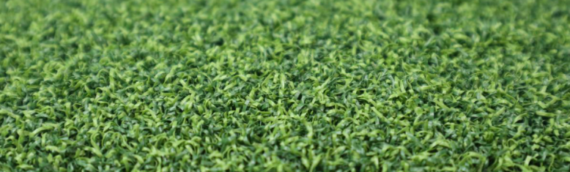 ▷Why Choose Artificial Grass In San Diego?
